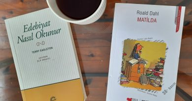 Edebiyat nasıl okunur: Bir Roald Dahl Örneği
